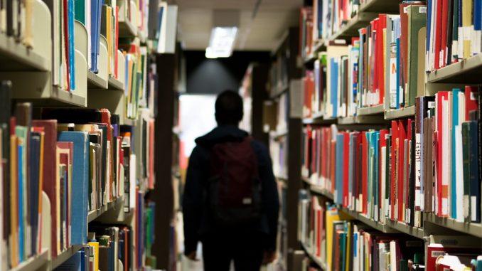 education, bachelor's degrees, Estonia